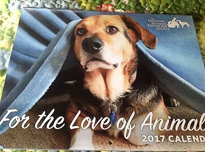 The National Humane Education Society 2017 Dog & Cat  Calendar Feed 15 Horses