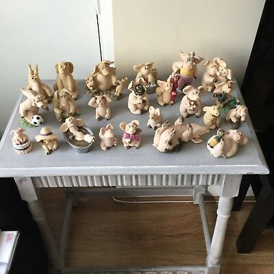 Large collection of piggin's collectable pigs by David Corbrige