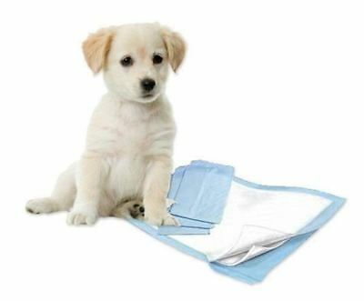 New 200Pc Pet Training Pads Puppy Trainer Toilet Pee Wee Mats Dog Cat Animal