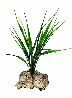 Plastic Vivarium Grass Plant Mounted On Cork Bark