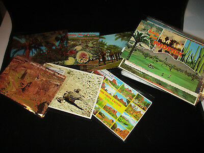 Lot of 179 Vintage Arizona Color 4x6 Continental Postcards, in Plastic