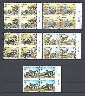 LESOTHO 1977 SG 329/33 MNH Blocks of 4 Cat £100
