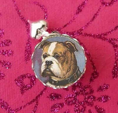 Vintage American Bulldog, dogs Silver Glass Bubble Charm, Pendant USA