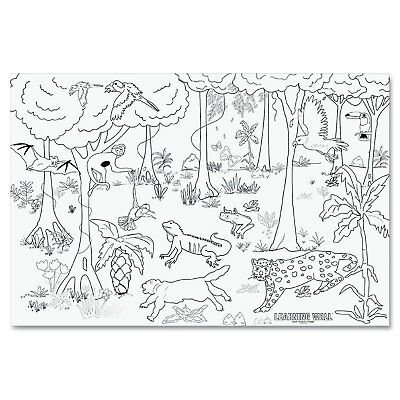 """Pacon Learning Walls Paper Rain Forest 72"""" x 48"""" 78840"""