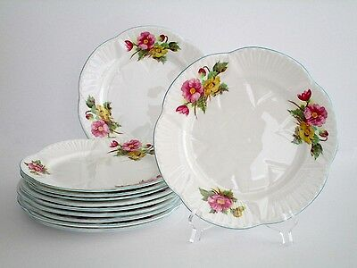 Set of 11, Shelley England Begonia Fine Bone China Salad Plate, Vintage