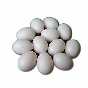 Easter Eggs Wooden Fake Eggs 9 Pieces -White Color by SallyFashion