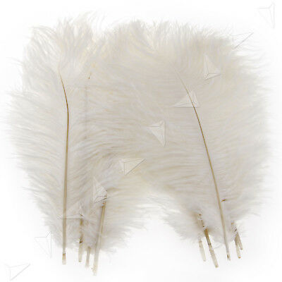"""10PCS Fluffy Ostrich Feathers Arts Crafts 10""""-12"""" Long White"""