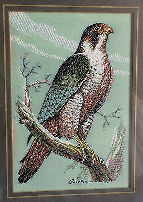 Woven Picture Matted & Framed by Cash's Pelgrin Falcon Woven Silk Thread