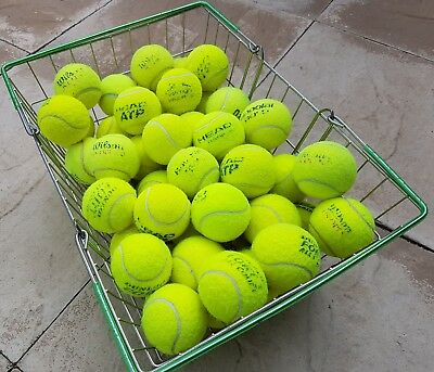 Used Tennis Balls For Dogs-15 20 30 40 50 60- Dog Ball / Toy. All Machine Washed