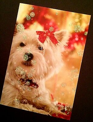 Westie Dog Christmas greeting card photograph white glitter Holiday New Year