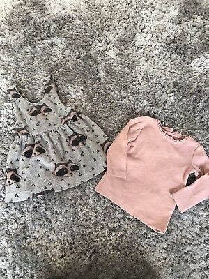 Next Baby Girl raccoon Top And Dress 3-6 Months