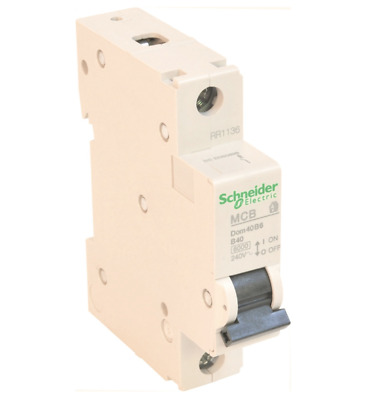 Schneider MCB SP Type B Circuit Breaker - Choose From 10A 40A 45A 32A 50AMP