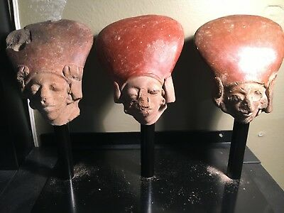 """3 Mounted Pre Columbian Jamacoaque Heads Circa 900AD All About 4 1/4"""" High"""