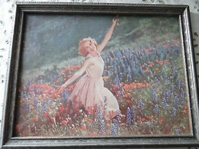 Vintage Picture Print of Girl Woman in Field of Flowers 1950's