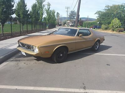 1973 Ford Mustang Base Hardtop 2-Door 1973 Ford Mustang Base Hardtop 2-Door 5.0L
