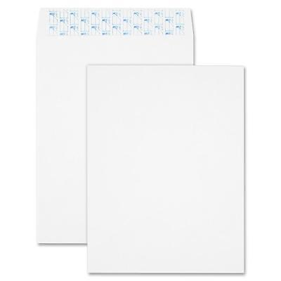 "Sparco Tyvek Open-End Envelope, Plain, 9""x12"", 100/BX, White 19756"