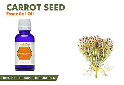 Carrot Seed Essential Oil 100% Pure Natural PREMIUM Therapeutic Grade Oils