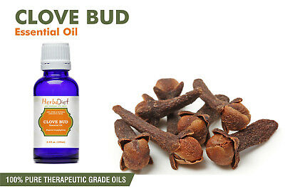 Clove Bud Essential Oil 100% Pure Natural PREMIUM Therapeutic Grade Oils