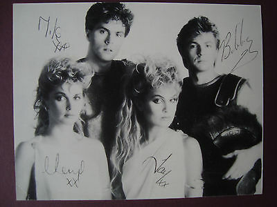 PRINTED SIGNATURES BUCKS FIZZ SIGNED PROMO CARD 1980s POP THE ALBUMS AUTOGRAPH