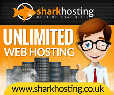 Unlimited Web Hosting Website Hosting Website Builder WordPress *INSTANT SETUP*