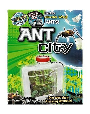 Tree Toys Wild Science Ant City Ant Farm Science Kits NEW FREE Post From NSW