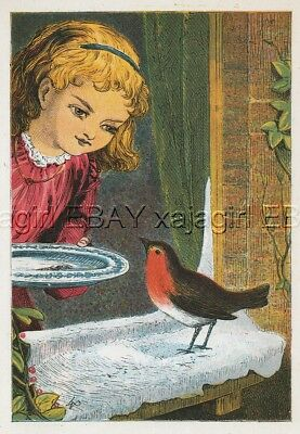 BIRD Robin Girl Brings Food to Window in Winter, Antique 1870s Chromolith Print