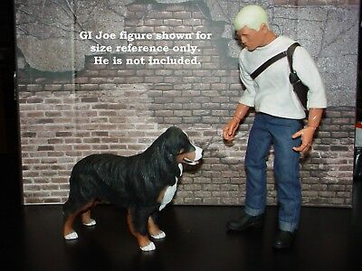"""1/6 Scale or close Bernese Mountain Dog Great for 12"""" Figures Free US Shipping"""