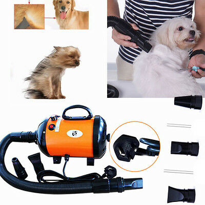 2800W Electric Pets Grooming Hair Dryer Dog Cat Blaster Blower Heater Low Noise