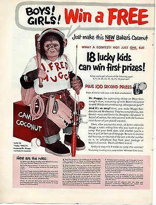 1954 Mr. Muggs Chimp on Dave Garroway Show Bakers Coconut 2 Page Print Ad