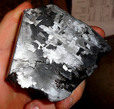 Beautiful 1060 Gm. Etched Campo Del Cielo Meteorite Triple Cut