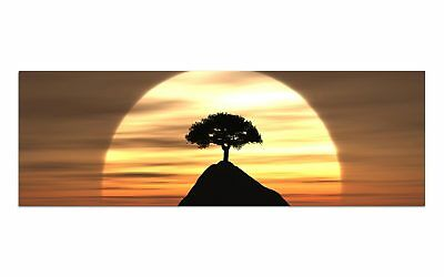 Deco Glasbild AG9-416/ 90x30cm MYSTIC TREE SUNSET DESIGN Wandbild