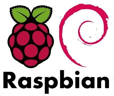 Raspbian Pre- Installed  - 16 GB Micro SD Card  Class 10 - Raspberry Pi 2 & 3