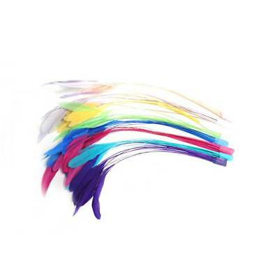 """CO051 Coq Stripped 10"""" x 10 feathers - For fascinators, hats & craft use"""
