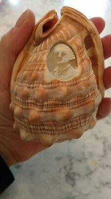 vtg conch carved shell man victorian? old