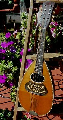 Vintage WJ Dyer Style Mandolin PLAYABLE Untouched Original Condition Great Tone