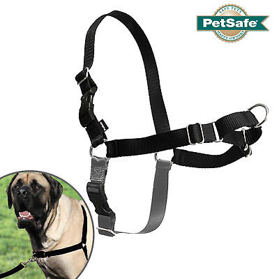 PetSafe Easy Dog Easy Walk Harness - All Sizes Black and Grey