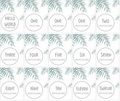 Watercolour Leaf Print Baby Milestone Cards - Pack of 15 - Baby Shower Gift