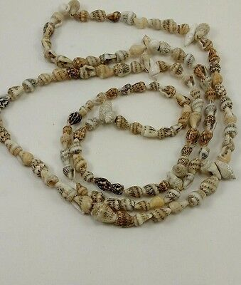 Hawaiian Style Conch Lei Necklace #601