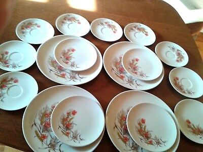 Lot of 17 pcs Melamineware Dorchester-Imperfect, gently used-Deal price
