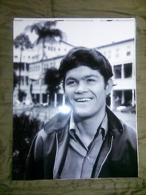 The Monkees Micky Dolenz 11x14 photo #37