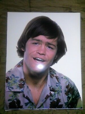 The Monkees Micky Dolenz 11x14 photo #40