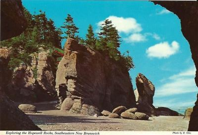 """Vintage collectible 4"""" x 6"""" POSTCARD exploring the Hopewell Rocks New Brunswick"""