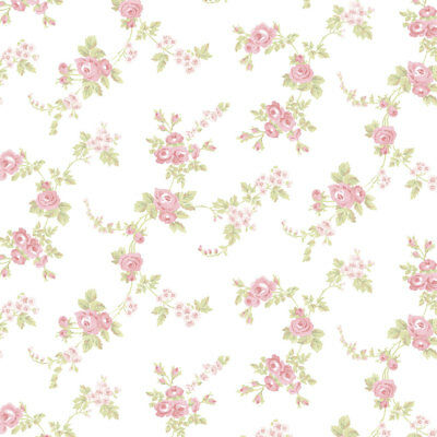 Norwall AB27658 Cabbage Rose Trail Wallpaper, Cream