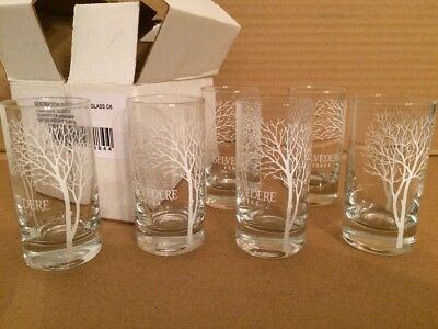 Set of 6 Belvedere Vodka Satin Tree Double Shot Glass SET Clear  NEW IN BOX
