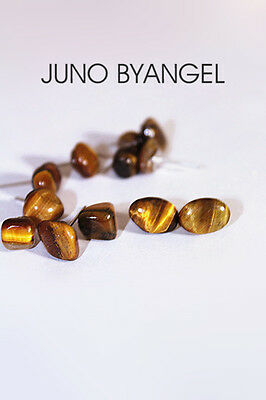 Natural cute tiger's eye stone earrings silver stud A Pair