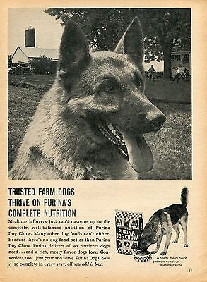 1970 Print Ad of Purina Dog Chow German Shepherd on the farm