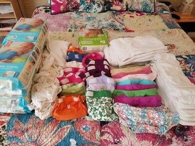 Complete Cloth Diapering Set - Flip, G Diaper, shells, inserts and wet bags