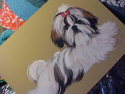 Shih Tzu  Original Painting