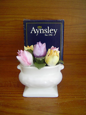 Aynsley Anniversary Flowers March Tulips - BNIB