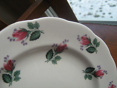 ROYAL STANDARD Bone China All over Pink Rose Bud Salad Plate EXC Cond England